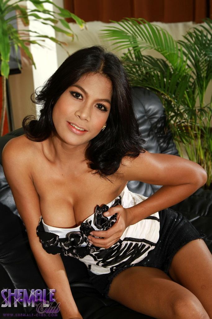 Brunette TS Vita Stripping And Posing Her Kissable Body