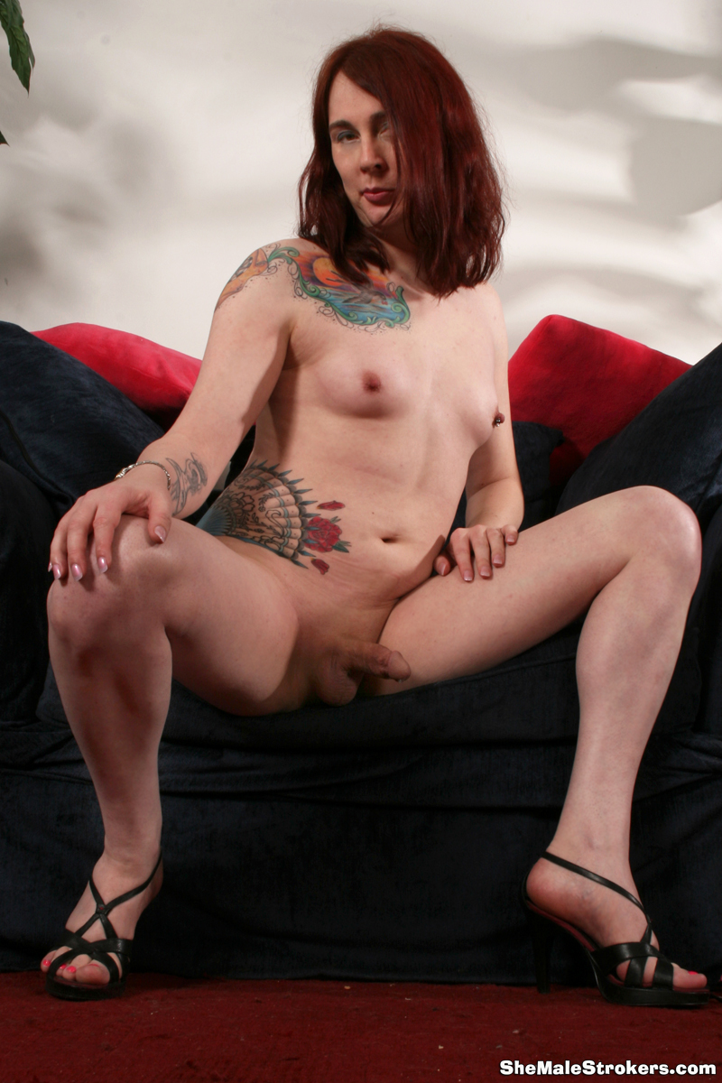 Tall Tattood TS April Breeze Strokes Her Penis For You!