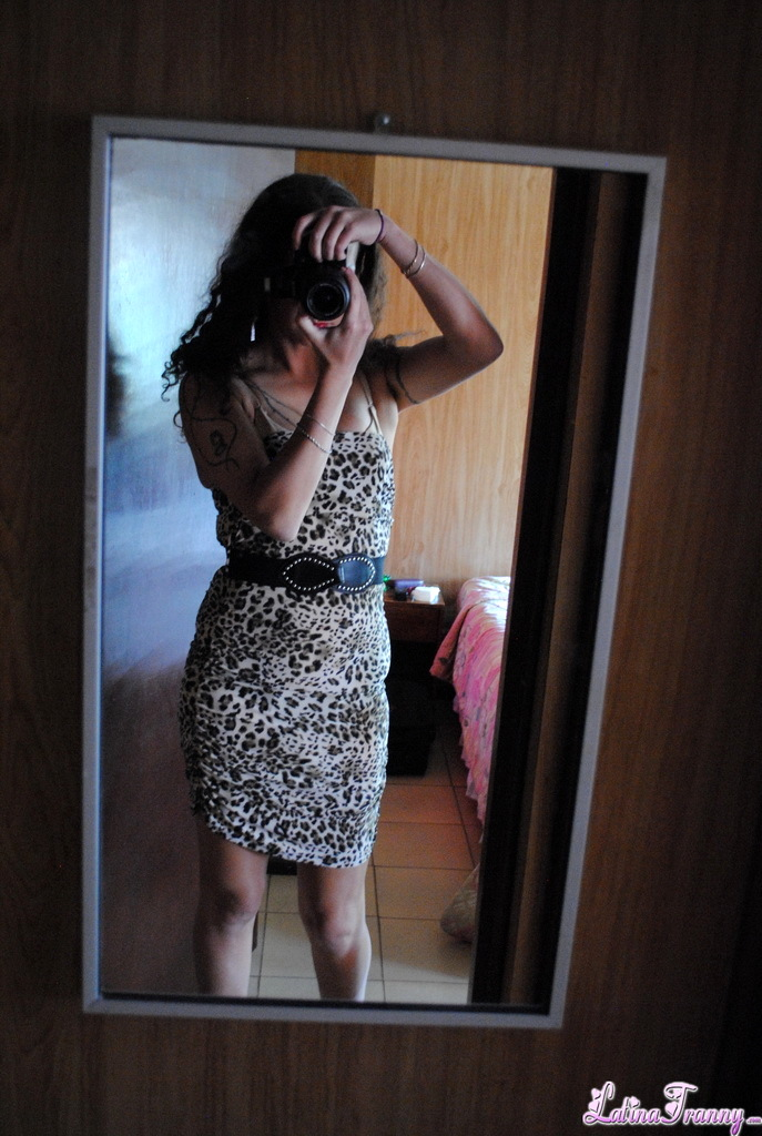 Nikki Mirror Dress