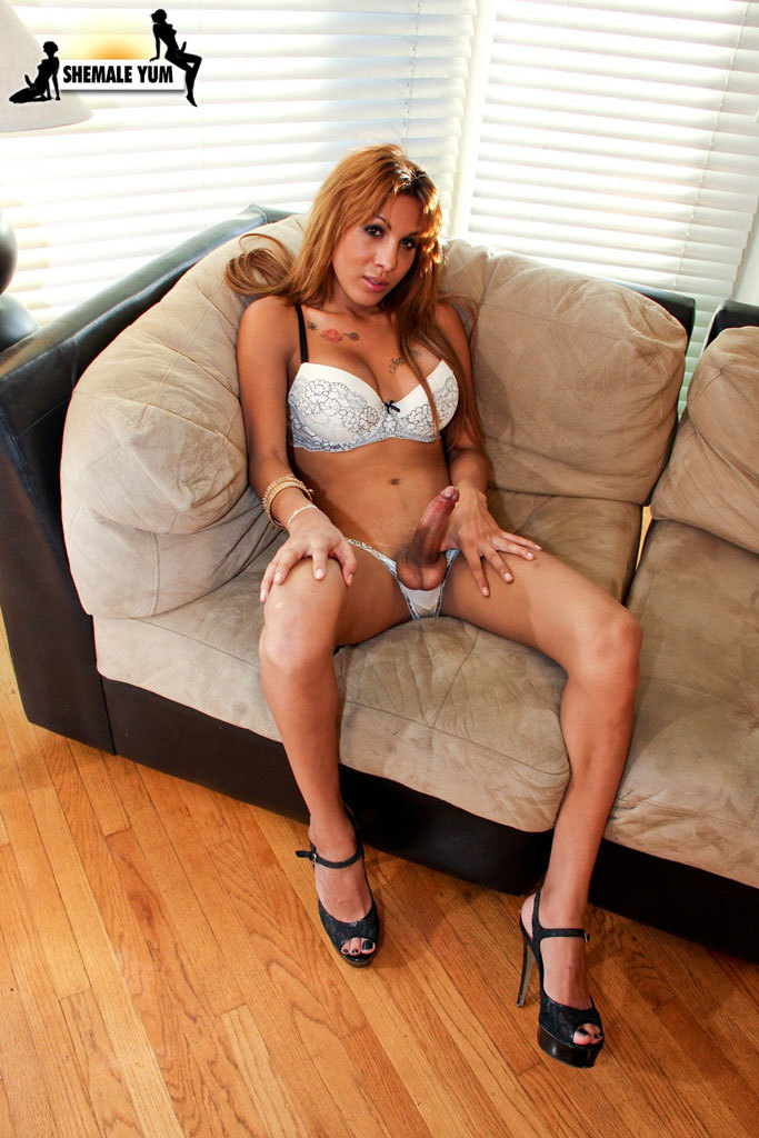 Enormous Tool Latina TS Bares All For You!