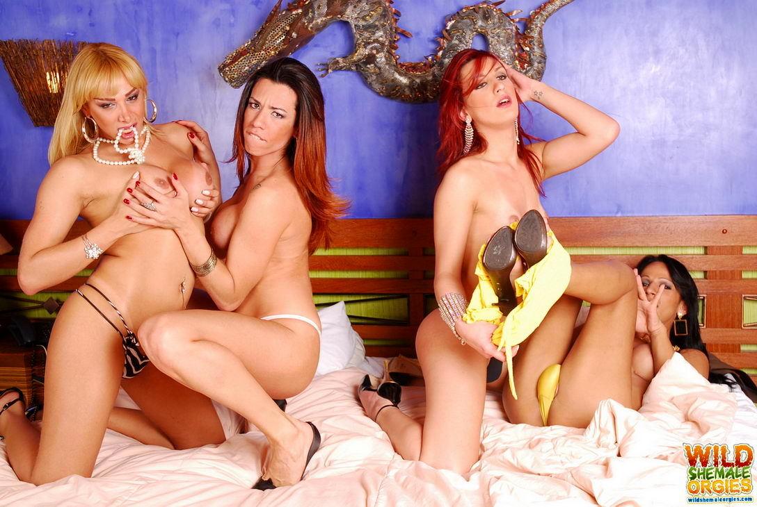 Nicolly Navarro Wild Shemale Orgies
