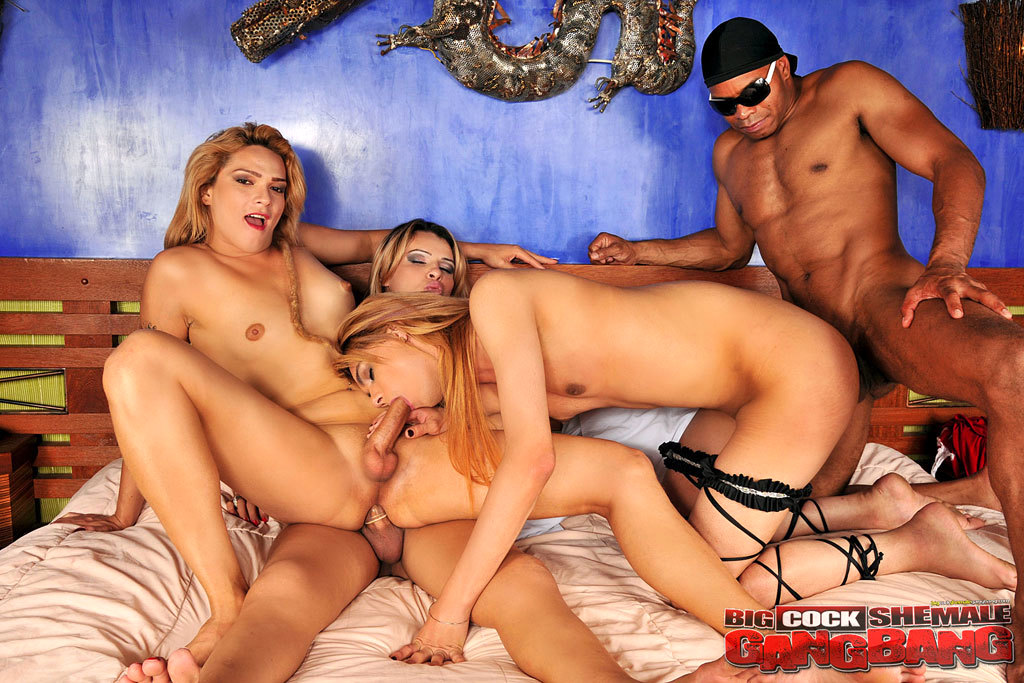 Big Dick Transexuals Group Sex